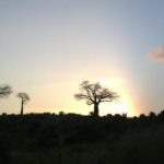 Spectacular sunsets in Mwaluganje