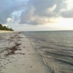 Spectacular morning at the Diani Beach